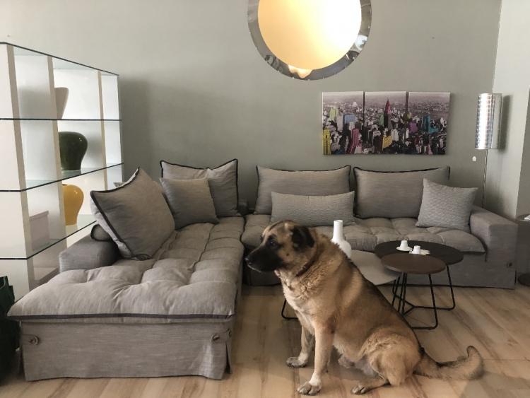 Barbara καναπές