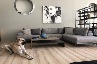 Shade καναπές με μεταλλικά πόδια